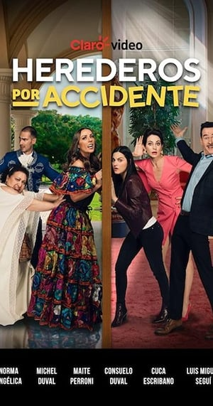 VER Herederos por accidente (2020) Online Gratis HD