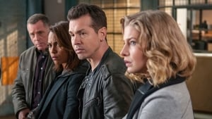Chicago Police Department: 2×13