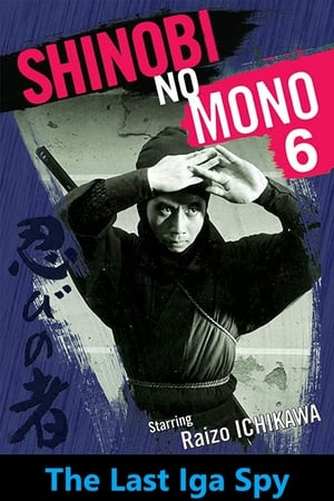 Shinobi No Mono 6: The Last Iga Spy (1965)