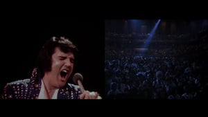 Elvis on Tour (2010)