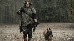 The Walking Dead: Origins 1×01