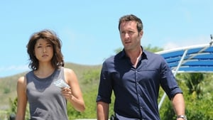 Hawaii Five-0 Season 6 : Ua 'o'oloku ke anu i na mauna (The Chilling Storm is on the Mountain)