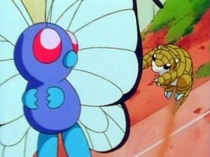 Pokémon 1×8