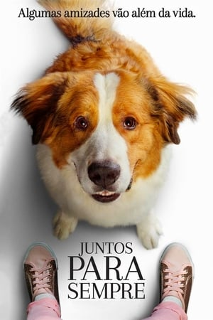 Juntos Para Sempre Torrent, Download, movie, filme, poster