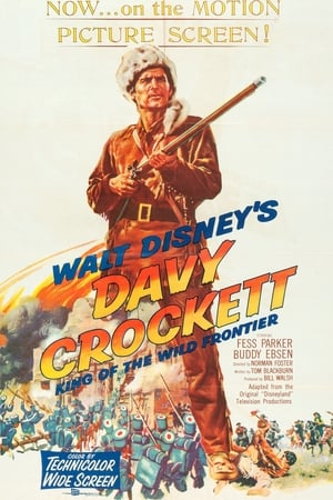 Play Davy Crockett, King of the Wild Frontier