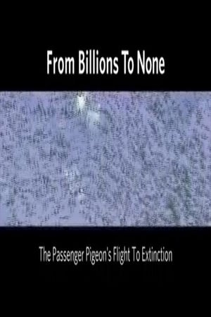 Image From Billions to None: The Passenger Pigeon's Flight to Extinction