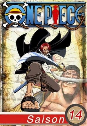 One Piece: 14 Temporada