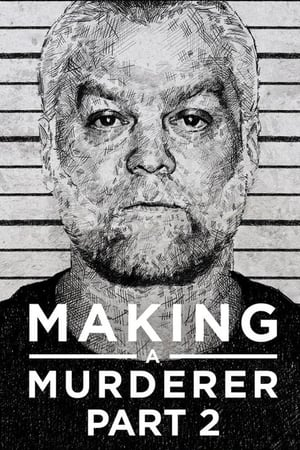 Making a Murderer Season 2