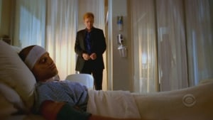 Online CSI: Miami Temporada 5 Episodio 15 ver episodio online Hombre Herido (2ª parte)