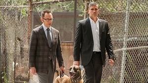 Person of Interest – 4 Staffel 2 Folge