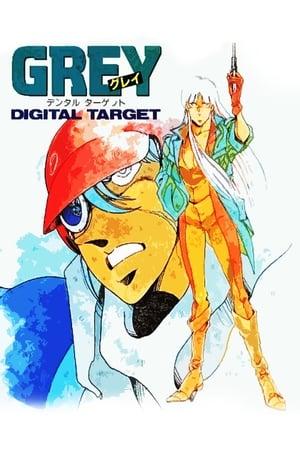 Grey: Digital Target