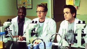 Porky Hospital 2004 Streaming Altadefinizione