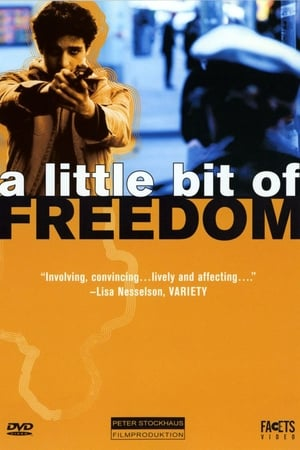 A Little Bit of Freedom-Azwaad Movie Database