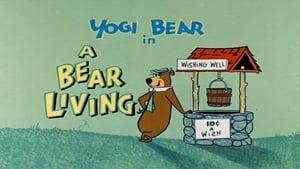 A Bear Living