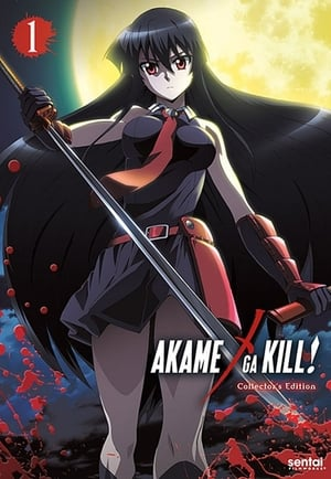 Akame ga Kill: 1 Temporada