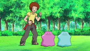 Pokémon Season 13 : Dealing with a Fierce Double Ditto Drama!