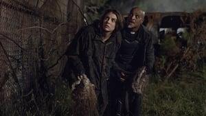 The Walking Dead Season 11 Episode 8