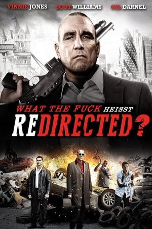 Poster Redirected (2014)