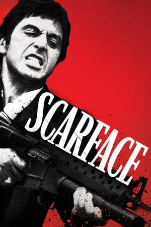 Scarface Torrent, Download, movie, filme, poster