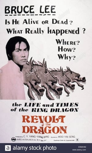 Watch Revolt of the Dragon Online