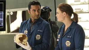 Bones Season 11 : The Movie in the Making