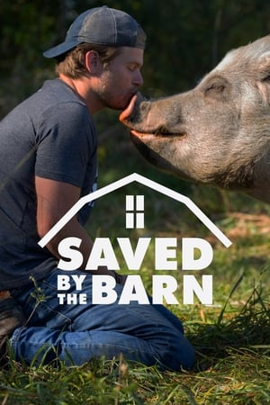 Saved By The Barn Sezonul 1 Episodul 11