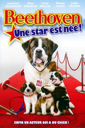 Beethoven 6 : une star est née !