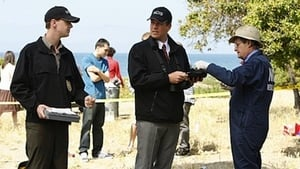 NCIS Season 7 :Episode 23  Patriot Down