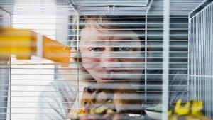 German movie from 2015: Der Hamster