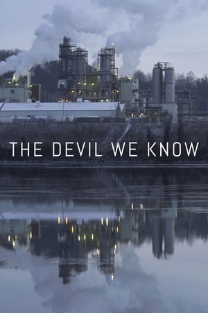 The Devil We Know film posters