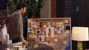 How I Met Your Mother: Season 9 Episode 9