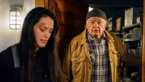 Resident Alien Season 1 : End of the World As We Know It