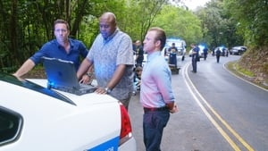 Hawaii Five-0 Season 5 :Episode 24  Luapo'i (Prey)