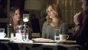 Arrow – Season 2 Episode 14
