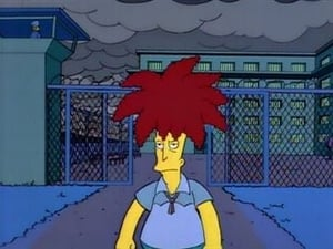 The Simpsons Season 6 :Episode 5  Sideshow Bob Roberts