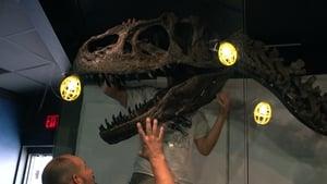 We Believe in Dinosaurs (2020)