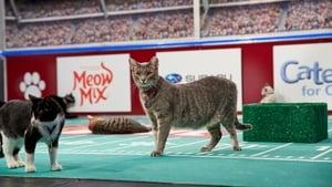 Hallmark Channel's 1st Annual Cat Bowl (2019)
