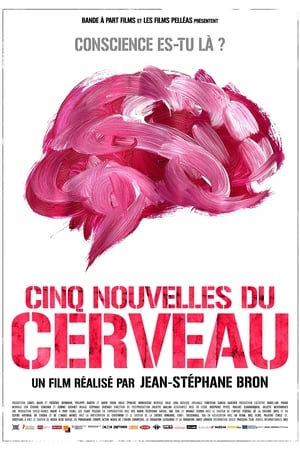 Cinq nouvelles du cerveau (2021)