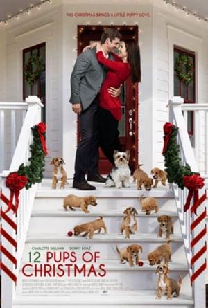 12 Pups of Christmas