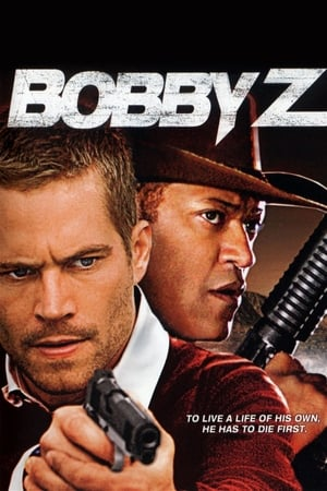 The Death and Life of Bobby Z (2007)