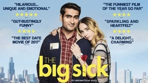 Watch The Big Sick 2017 Full Movie Online Free Streaming