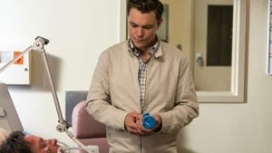 Rectify: 2×1