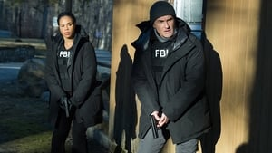 FBI: Most Wanted: 2×6