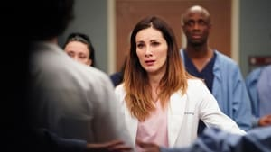 Grey's Anatomy Season 16 : Give a Little Bit