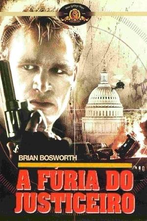 A Fúria do Justiceiro Torrent, Download, movie, filme, poster