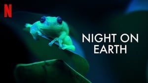 Night on Earth 2020 Online Zdarma CZ-SK [Dabing-Titulky] HD