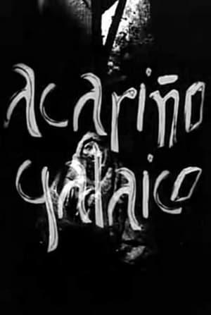 Tríptico Elemental de España: Acariño galaico (De barro)