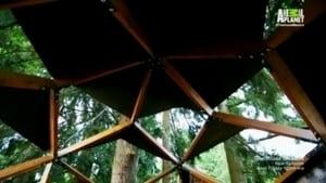 Cabanes Perchées: 2×15