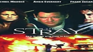 The Stray – Der Racheengel (2000)