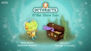 The Octonauts: 1×38